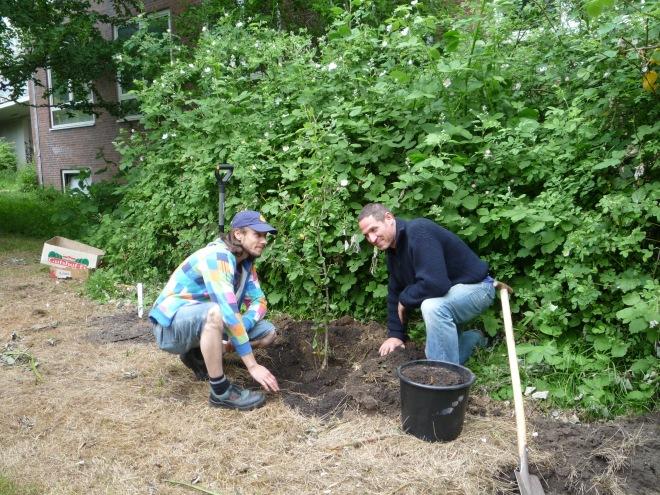 Matthias und Joshua pfanzen einen Apfelbaum